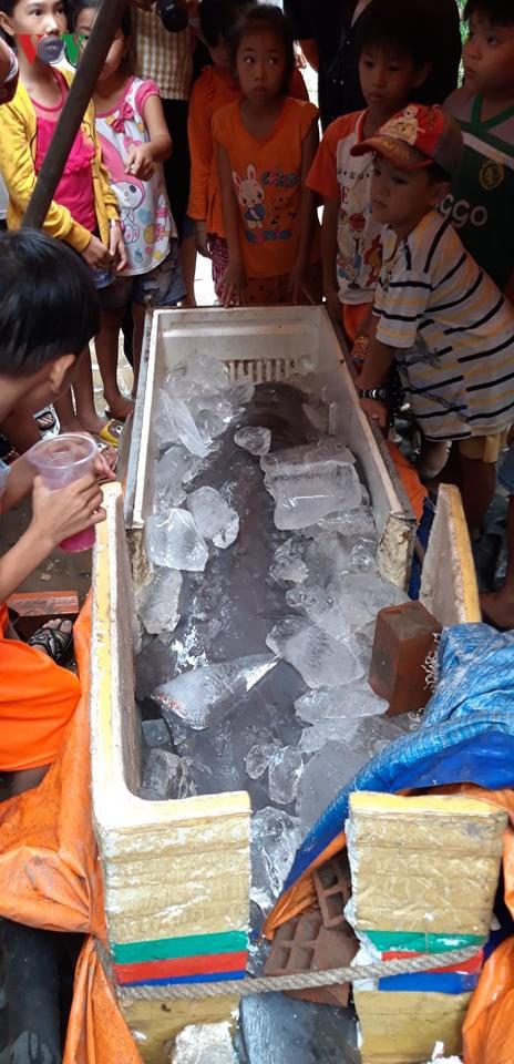 """Cá """"khủng"""" quý hiếm được đưa ra Hà Nội phục vụ nghiên cứu khoa học - Ảnh 2."""