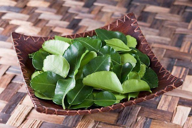 Lá chanh ở Việt Nam chỉ để ăn với thịt gà luộc, sang châu Âu bán 6,3 triệu đồng/kg - Ảnh 2.