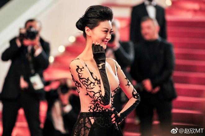 Cái giá phải trả của sao nữ hở bạo tại thảm đỏ LHP Cannes: Bị khinh rẻ, đánh mất sự nghiệp - Ảnh 5.