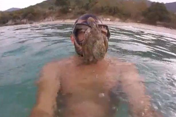 Hè đến ai cũng thích đi bơi nhưng những hình ảnh rợn tóc gáy này sẽ khiến bạn phải suy nghĩ lại - Ảnh 5.