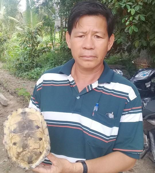 Hết rắn và trăn khủng, người dân An Giang lại phát hiện rùa lạ hiếm - Ảnh 3.