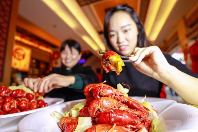 Tôm hùm càng đỏ Trung Quốc được nhập về Việt Nam với giá siêu rẻ - Ảnh 1.