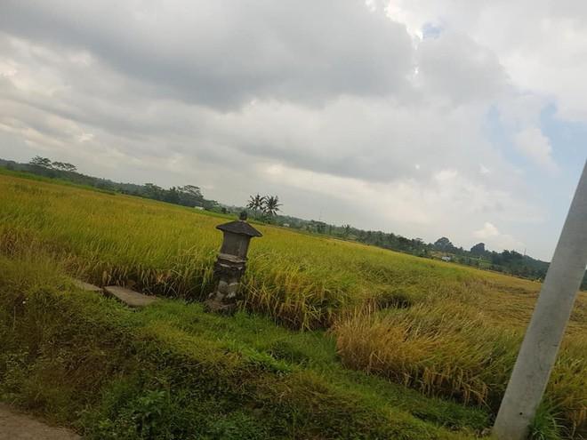 """Review sốc: Cư dân mạng tranh cãi gay gắt sau khi một nữ du khách Việt đăng đàn chê Bali là """"ảo"""" và """"vô vị"""" - Ảnh 14."""
