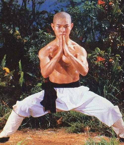 Lý Liên Kiệt gây sốc khi tiết lộ cát-xê không tưởng thời đóng phim Thiếu Lâm Tự - Ảnh 1.
