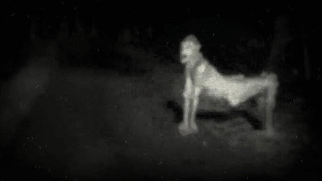 5 con quái vật đáng sợ nhất trong các truyền thuyết đô thị - Ảnh 3.