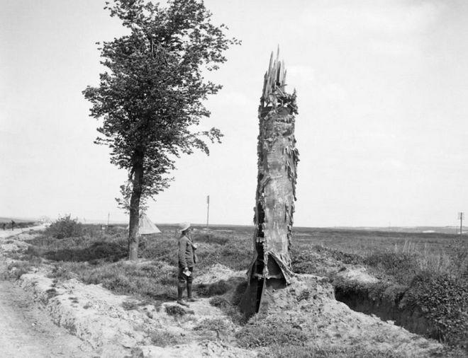Đây là phương pháp ngụy trang độc đáo cho chòi canh trong Thế chiến thứ Nhất - Ảnh 6.