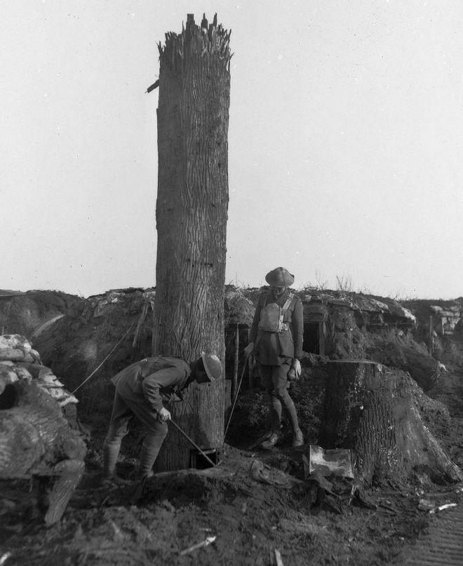 Đây là phương pháp ngụy trang độc đáo cho chòi canh trong Thế chiến thứ Nhất - Ảnh 9.