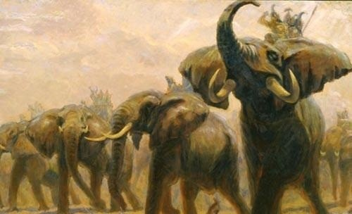 Cách tuyển voi oai hùng trong sử Việt: 500 lính múa đao xông tới, voi Chúa Nguyễn vẫn đứng yên - Ảnh 2.