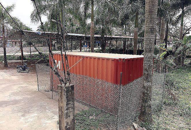 Vì sao lô gỗ sưa trăm tỷ ở Hà Nội chưa bán đấu giá? - Ảnh 1.