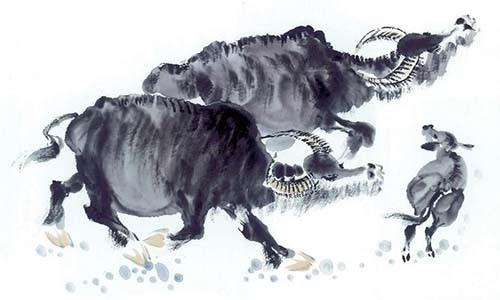 Sau Tết Đoan Ngọ, 5 con giáp này gặp vận may ào ạt, tiền vào như nước - Ảnh 1.