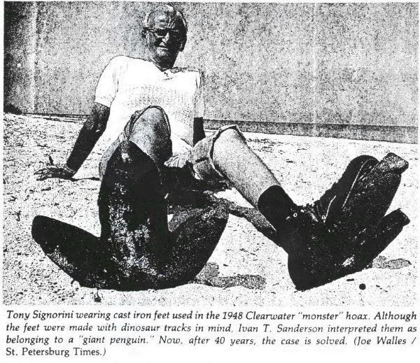Cú lừa 40 năm: Con chim cánh cụt cao 4,5 mét dạo bước trên bờ biển Florida chỉ là trò chơi khăm - Ảnh 4.