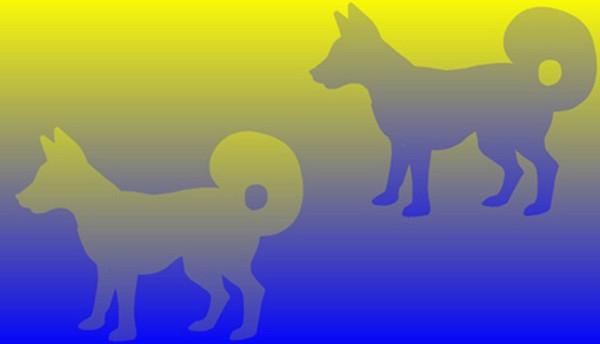 Bức hình gây lú nhất MXH hôm nay: Rõ ràng là một lam một xanh ngọc, thế mà hóa ra lại cùng một màu? - Ảnh 6.
