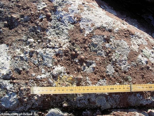 Thiên thạch khổng lồ từng tấn công Trái Đất cách đây 1,2 tỷ năm và đây là hậu quả - Ảnh 2.