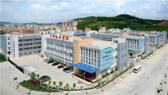Ôm đùi Huawei, một công ty bán ốp lưng cũng có thể nổi danh thế giới - Ảnh 1.