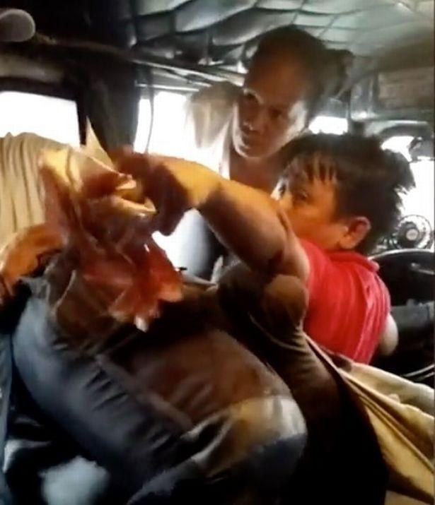 Màn đánh ghen gây náo loạn chiếc xe buýt: Vợ nhảy lên ghế lái phang tới tấp vào mặt chồng rồi hét tôi đẻ cho ông 12 đứa con rồi còn muốn gì nữa - Ảnh 2.