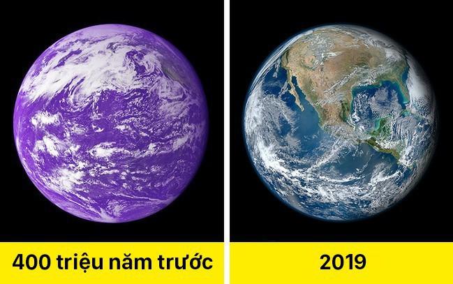 Trái Đất màu tím, cát biết hát và 11 sự thật khác lạ về thế giới khiến ai cũng ngạc nhiên - Ảnh 8.