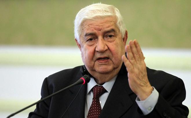 Tuyên bố không muốn hai bên đánh nhau, Syria hỏi mục đích thực sự của Thổ Nhĩ Kỳ - Ảnh 1.