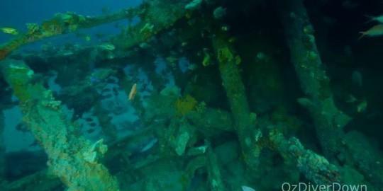 Mộ phần dưới đáy biển lộ diện sau 1 thế kỷ - Ảnh 3.