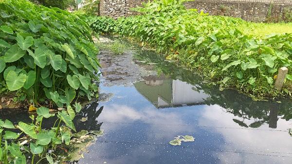 Công ty nước ngoài bị phạt gần 200 triệu đồng vì xả nước đen ngòm ra môi trường tự nhiên - Ảnh 2.
