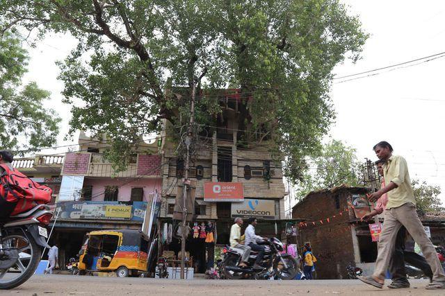 Xây nhà lại phải vướng cây cổ thụ trăm tuổi, gia đình không phá đi mà quyết định làm một việc khiến ai đi qua cũng phải ngước nhìn - Ảnh 1.