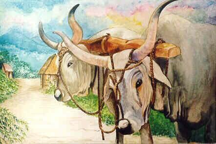 5 con giáp nữ dễ có 2 lần đò, sau lần đầu đổ vỡ mới tìm thấy hạnh phúc chân chính của cuộc đời - Ảnh 1.