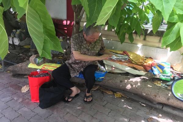 Cụ bà Sài Gòn ngả lưng trên thân cây khô chờ cháu ngoại đi thi - Ảnh 2.