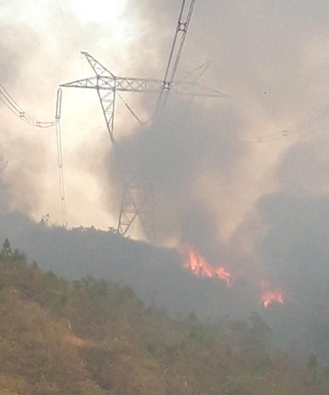 EVN: Hơn 1km đường dây 500kV đoạn Đà Nẵng - Hà Tĩnh đã an toàn sau sự cố cháy rừng - Ảnh 1.