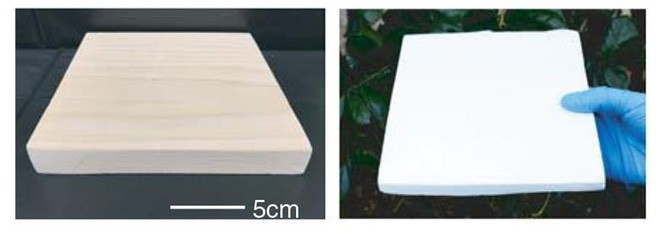 Các nhà khoa học tạo ra loại siêu gỗ mới, khỏe hơn cả nhôm, tự động làm mát mà không tốn điện - Ảnh 1.
