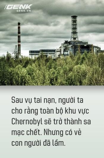 Từ địa ngục, Chernobyl nay trở thành thiên đường cho các loài động vật, có phải con người mới đáng sợ hơn cả hạt nhân? - Ảnh 6.