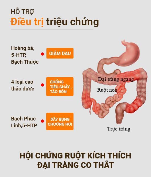 Hiểu đúng về nguyên nhân, triệu chứng hội chứng ruột kích thích để tìm ra cách chữa hiệu quả - Ảnh 4.