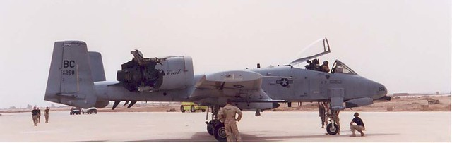 Lợn lòi A-10 sẽ bị thay thế bằng Voi trắng F-35? Sự nuối tiếc của cựu binh Mỹ - Ảnh 2.