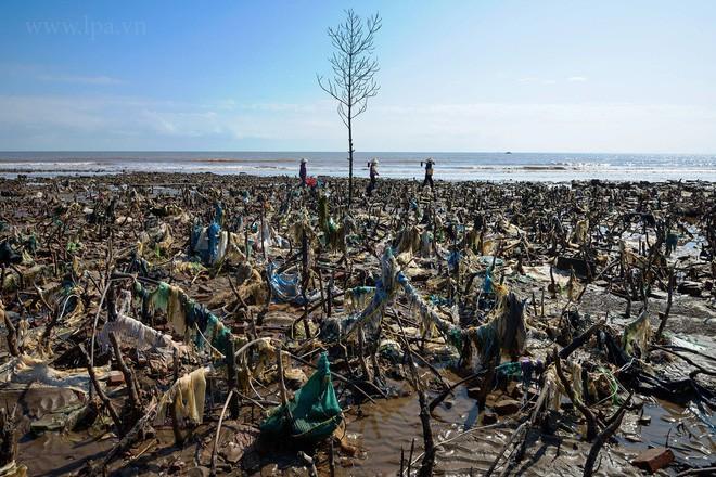 Ban cố vấn WeDo - Cuộc Chiến Trộm Nhựa: Sống xanh không quá khó khăn, nên chúng ta đừng làm khó mình quá - Ảnh 3.
