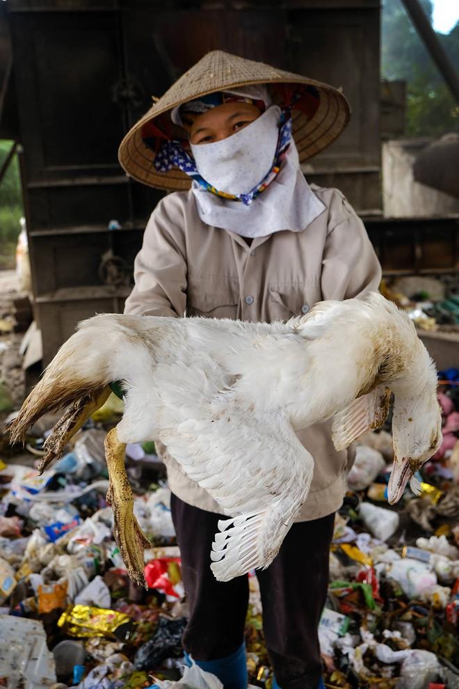 Ban cố vấn WeDo - Cuộc Chiến Trộm Nhựa: Sống xanh không quá khó khăn, nên chúng ta đừng làm khó mình quá - Ảnh 4.