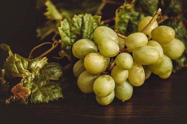 7 thực phẩm thải độc gan tự nhiên: Số 1 và số 2 đều rất quen thuộc với người Việt - Ảnh 5.
