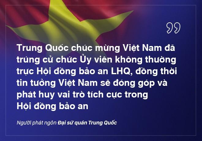 Việt Nam trúng cử HĐBA LHQ với số phiếu kỷ lục: Kỳ vọng của các nhà ngoại giao quốc tế - Ảnh 6.