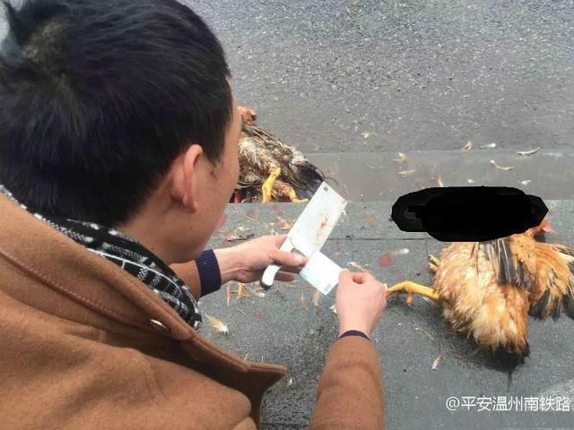 Ga tàu cấm động vật sống, người phụ nữ thản nhiên cắt tiết gà trước cổng soát vé để lách luật - Ảnh 3.