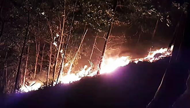 Hàng trăm người xuyên đêm chữa cháy rừng tại Quảng Nam - Ảnh 2.