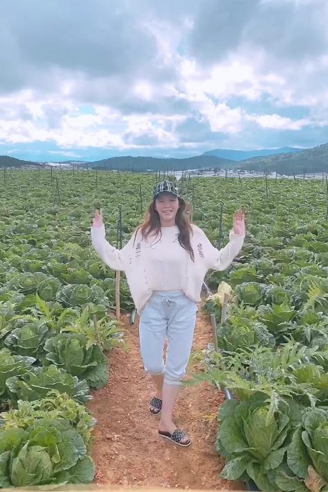 Lý Nhã Kỳ bỏ trăm tỉ mua 50 hecta đất ở Đà Lạt để trồng rau, nuôi gà? - Ảnh 1.