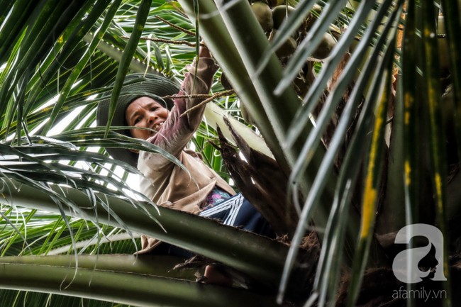 Nụ cười giòn tan của bà ngoại 12, kể chuyện mang bầu 6 tháng vẫn leo trên ngọn dừa, cất được nhà trăm triệu cho chồng - Ảnh 4.