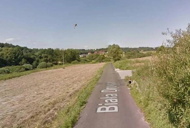 Giật mình với cảnh xe Google đâm phải con thỏ lao qua đường, húc bay cả lên trời cao - Ảnh 4.