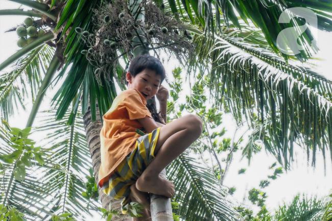 Nụ cười giòn tan của bà ngoại 12, kể chuyện mang bầu 6 tháng vẫn leo trên ngọn dừa, cất được nhà trăm triệu cho chồng - Ảnh 10.