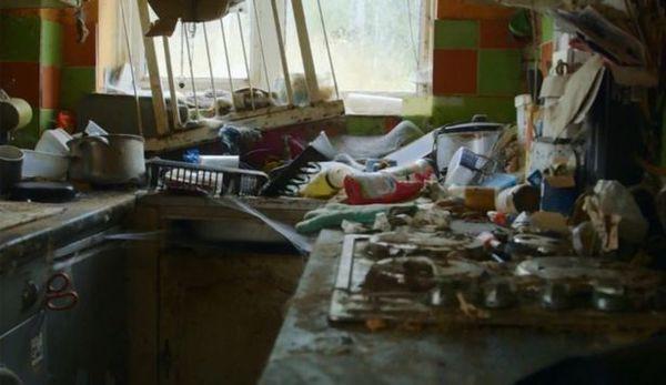 Hãi hùng trước căn nhà ngập ngụa rác, không hề lau dọn suốt 5 năm trời - Ảnh 2.