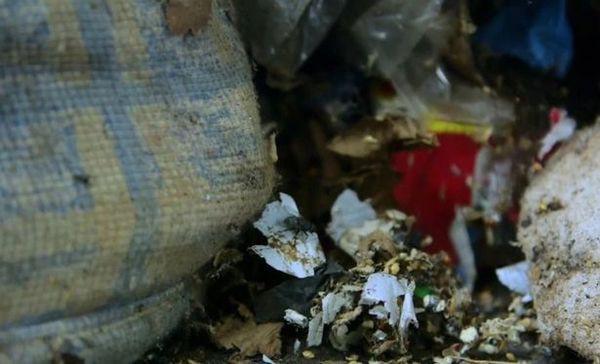 Hãi hùng trước căn nhà ngập ngụa rác, không hề lau dọn suốt 5 năm trời - Ảnh 5.