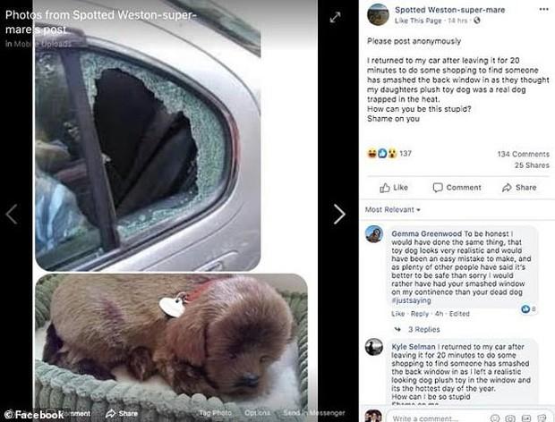 Nữ tài xế nổi điên khi bị 'hảo hán vô danh' đập nát kính xe chỉ để giải cứu... một con cún bông giữa trưa nắng cực độ - Ảnh 1.