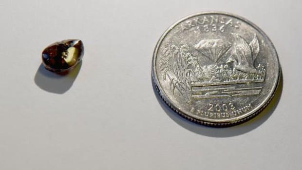 Thầy giáo đi dạo công viên, nhặt được cục kim cương 2,12 carat - Ảnh 2.