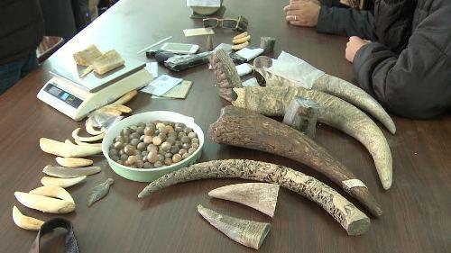 Nguyên Giám đốc BV K kể về nỗi xấu hổ khi bị chất vấn chuyện người Việt dùng sừng tê giác - Ảnh 1.