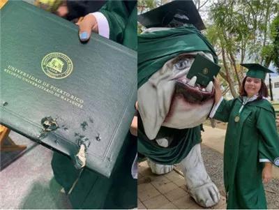 Mải mê chụp ảnh với đám bạn, nữ sinh vô ý bị chú chó Bull Anh cắn rách bằng tốt nghiệp - Ảnh 1.