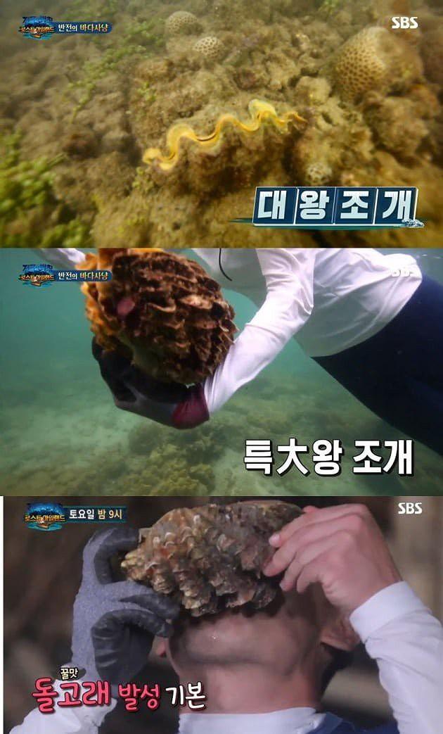Thái Lan quyết xử vụ sao Hàn Quốc ăn sò khổng lồ 50 năm tuổi quý hiếm - Ảnh 3.