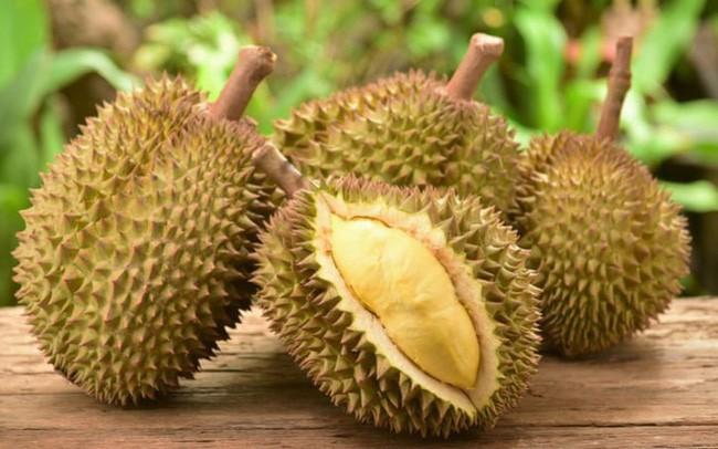 8 ưu điểm vượt trội khiến cho sầu riêng được đặt mỹ danh là nữ hoàng trái cây nhiệt đới - Ảnh 3.