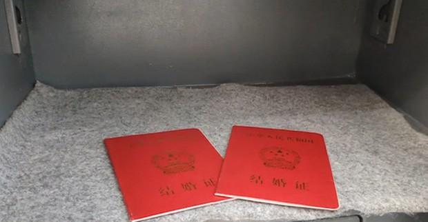 Sở thú mở dịch vụ cất giữ giấy đăng ký kết hôn trong chuồng hổ cho đỡ... chia tay - Ảnh 2.